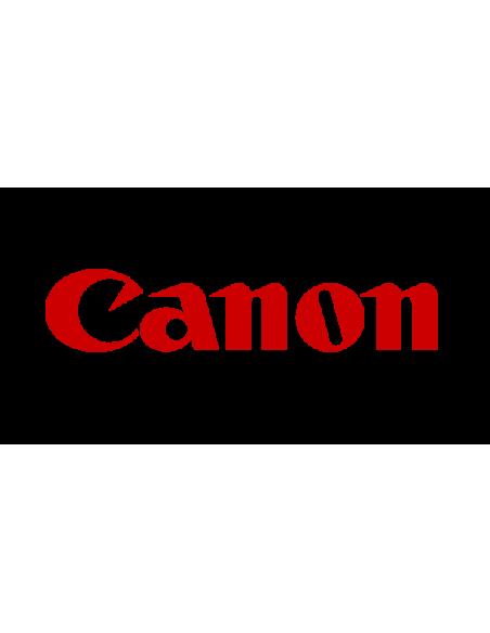 Чернила Canon