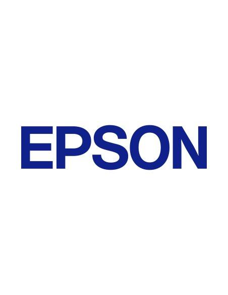 Чип Epson
